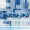 Выставки в Ильинском-Хованском
